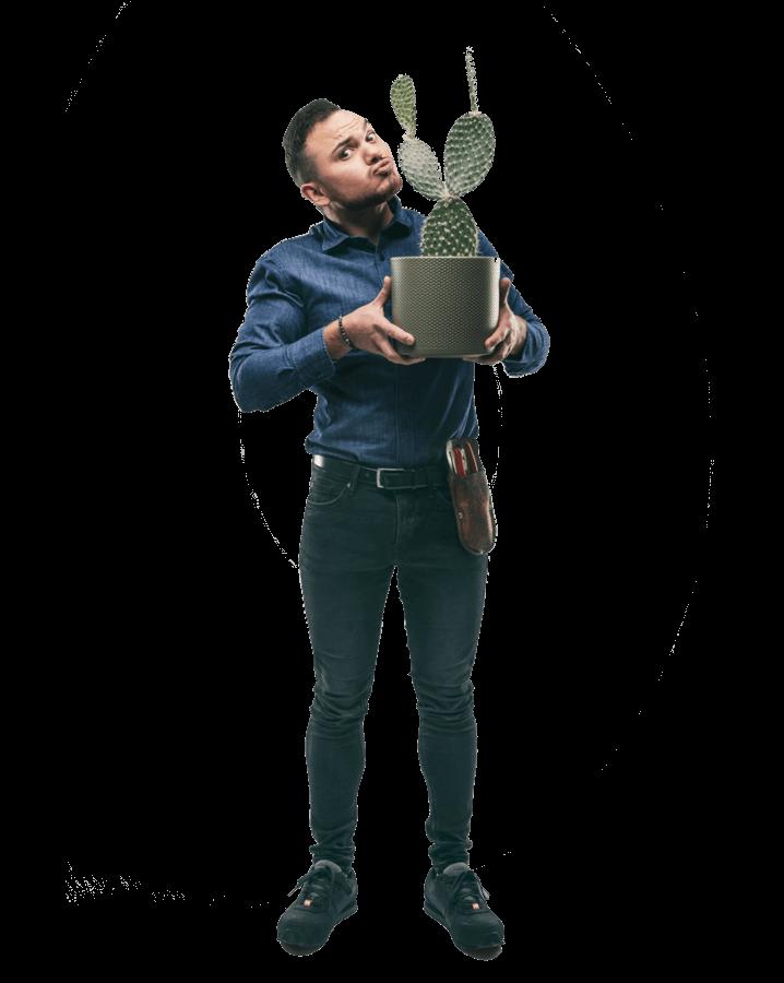 Buitenbeplanting
